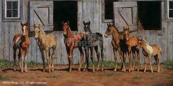 Little Partners Foals Horses Canvas Giclee Art Print Wall Art