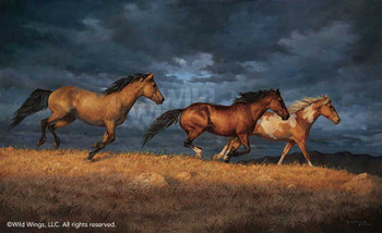 Thunder Ridge Horses Canvas Giclee Art Print Wall Art