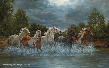 Storm Crossing Wild Horses Art Print Wall Art