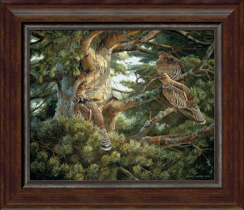 Sunlit Pine Ruffed Grouse Framed Canvas Giclee Art Print Wall Art