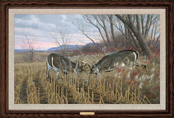 Battling Bucks Whitetail Deer Framed Canvas Giclee Art Print Wall Art