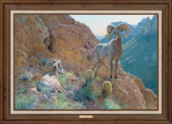 The Overseer Desert Bighorn Sheep Framed Canvas Giclee Art Print