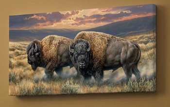 Dusty Plains Bison Wrapped Canvas Giclee Print Wall Art