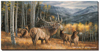 Meadow Music Elk Wrapped Canvas Giclee Print Wall Art