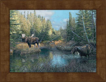 Small Caldwell Creek Bull Moose Framed Canvas Art Print Wall Art