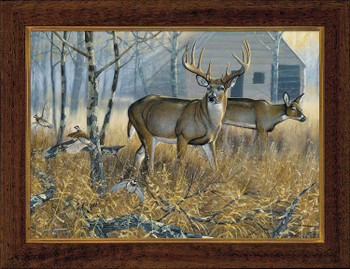 Small Mixed Company Deer Framed Canvas Art Print Wall Art