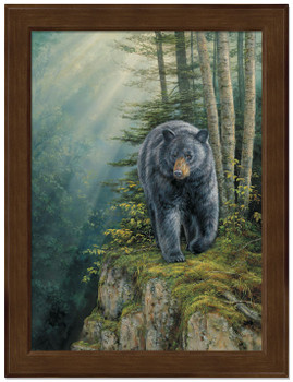 Small Rocky Outcrop Black Bear Framed Canvas Art Print Wall Art