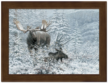 Small Patient Suitor Moose Framed Canvas Art Print Wall Art
