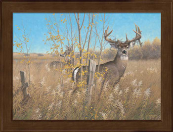 Small The Old Warrior Whitetail Deer Framed Canvas Art Print Wall Art