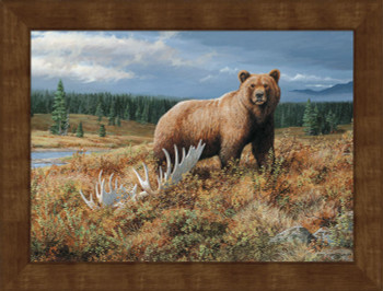 Large Autumn Splendor Grizzly Bear Framed Canvas Art Print Wall Art