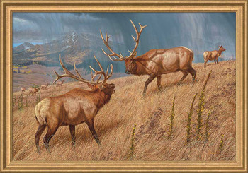 Storm Brewin' Elk Framed Canvas Art Print Wall Art