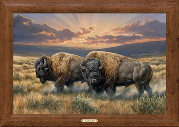 Dusty Plains Bison Framed Canvas Art Print Wall Art