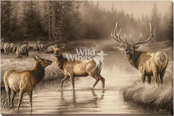 Autumn Mist Elk Wrapped Canvas Giclee Art Print Wall Art