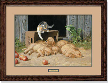 The Wake Up Call Kitten Waking Up Puppies Framed Art Print Wall Art