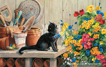 Gardener's Helper Cat Artist Proof Art Print Wall Art