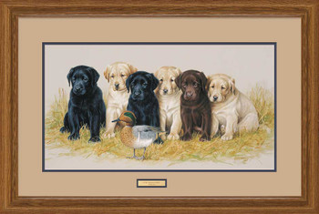 The Greenhorns Puppies Framed Artist Proof Art Print Wall Art