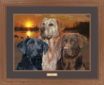 Sunset Trio Lab Dogs Framed Art Print Wall Art