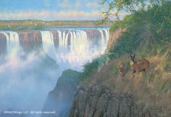 Victoria Falls Bush Buck Canvas Giclee Art Print Wall Art
