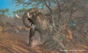 Rolling Thunder Elephant Canvas Giclee Art Print Wall Art