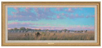 Well Fed Lions Framed Canvas Giclee Art Print Wall Art