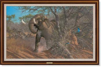 Rolling Thunder Elephant Framed Canvas Giclee Art Print Wall Art