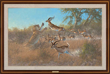 Quick and Easy Lions and Impalas Framed Canvas Giclee Art Print