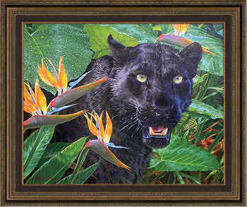 Trouble in Paradise Black Leopard Framed Canvas Giclee Art Print