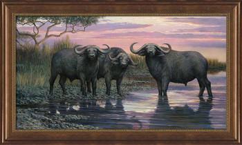 Nightfall Cape Buffalo Framed Canvas Giclee Art Print Wall Art
