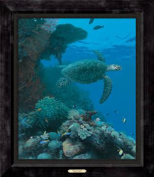 Reef Sentinel Sea Turtle Framed Canvas Giclee Art Print Wall Art
