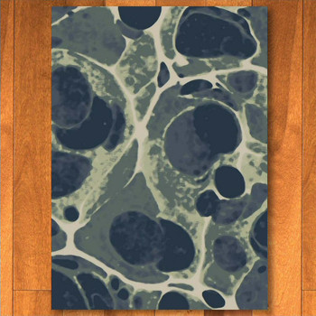 5' x 8' Deep Sea - Sea Foam Rectangle Rug