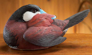 Preening Ruddy Hand Painted Duck Decoy Sculpture