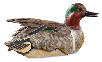 Lifesize Preening Green Winged Teal Hand Painted Duck Decoy Sculpture