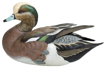 Weaver Bottoms American Widgeon Hand Painted Duck Decoy Sculpture