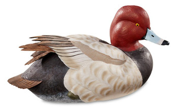 Swan Lake Redhead Duck Lifesize Hand Painted Duck Decoy Sculpture