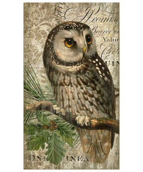 Owl Bird Vintage Style Metal Sign