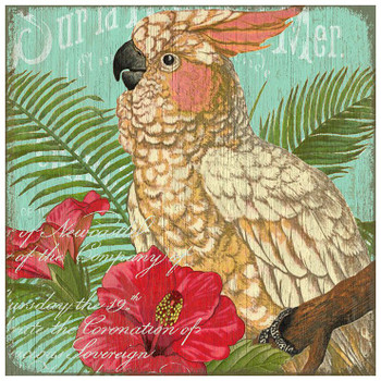 Cockatoo Bird Vintage Style Metal Sign