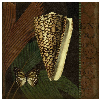 Trinidad 6 Seashell and Butterfly Vintage Style Metal Sign
