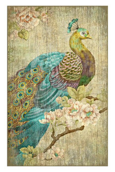 Peacock Bird Vintage Style Wooden Sign