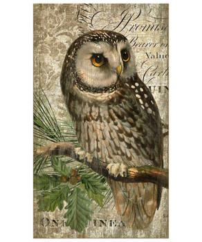 Owl Bird Vintage Style Wooden Sign