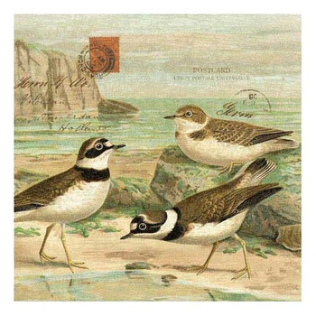 Sandpiper Birds on Beach Vintage Style Wooden Sign