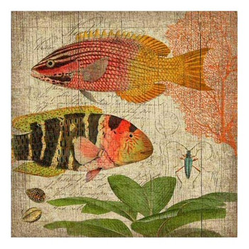 Natural History with Pink Fish Vintage Style Wooden Sign