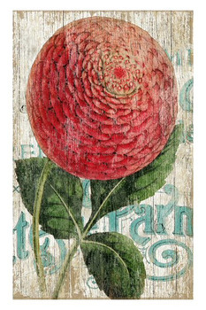 Red Zinnia Flower Vintage Style Wooden Sign