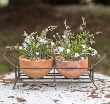 Green Rust Iron Caddy Planter with Two Terra Cotta Pots