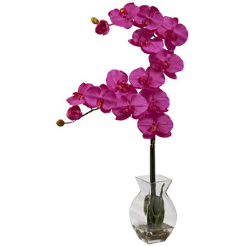 Phalaenopsis Beauty Orchid Silk Flower Arrangement with Vase