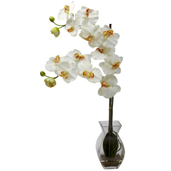 Phalaenopsis Cream Orchid Silk Flower Arrangement with Vase