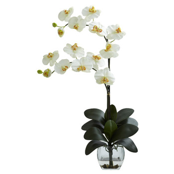 Double Phalaenopsis Cream Orchid Silk Flower Arrangement with Vase