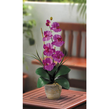 Single Stem Phalaenopsis Silk Orchids - Orchid
