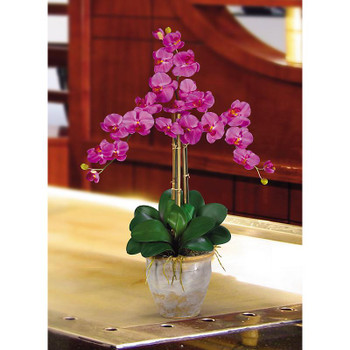 Triple Stem Phalaenopsis Silk Orchids - Orchid
