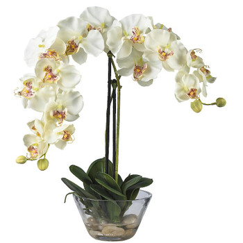 Phalaenopsis Silk Arrangement with Vase - White