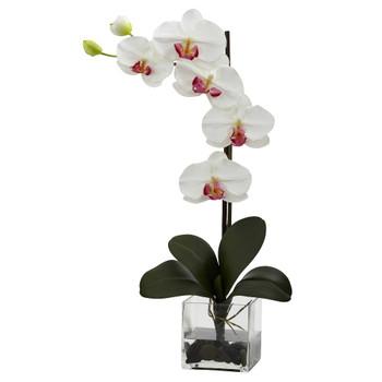Giant Phalaenopsis White Orchid Silk Flower Arrangement with Vase